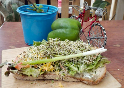 Vegan options at The Little Red Bike